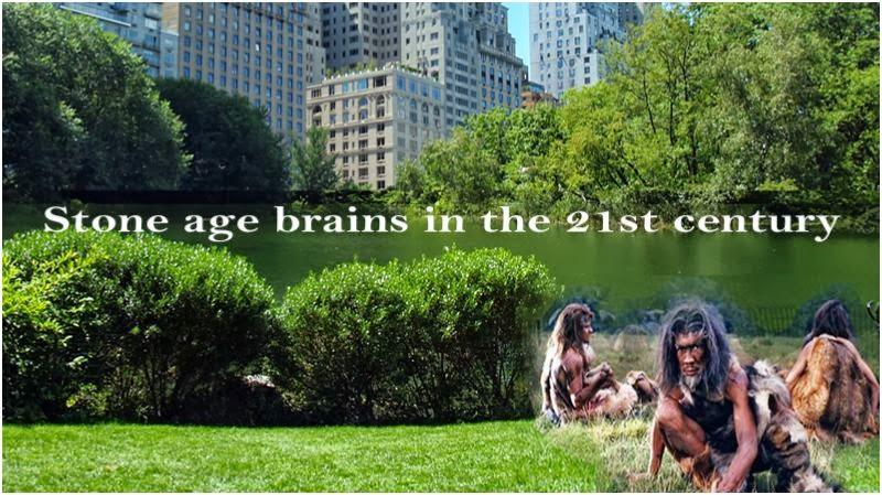 changing minds: stone age brain